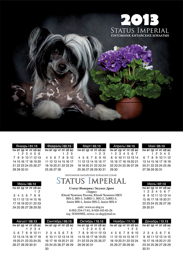 http://www.sfweb.ru/animals/portfolio/calendars/09.jpg