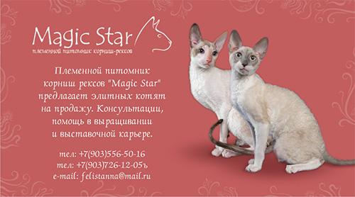 http://www.sfweb.ru/animals/portfolio/cards/07.jpg