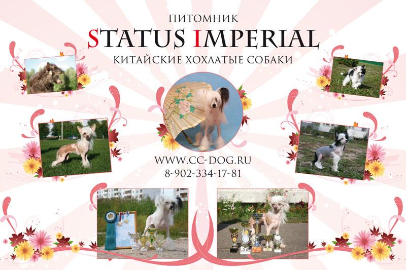 http://www.sfweb.ru/animals/portfolio/posters/03.jpg